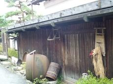 P1050023_tumagoi
