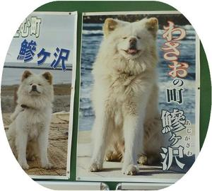 P1040295wasao6_2