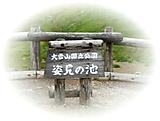 P1230816sugataminoike_3