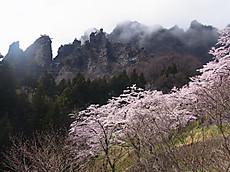 Rimg0068burogu