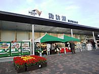 Pa241231_1suwako_2