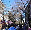 Rimg0014burogu_15