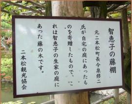 Rimg0460_fuji20