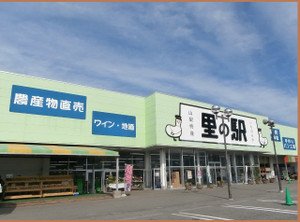 Pa270197_1burogu_3