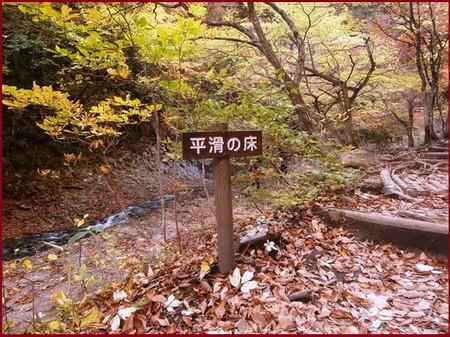 Pa250108hirakotunotoko