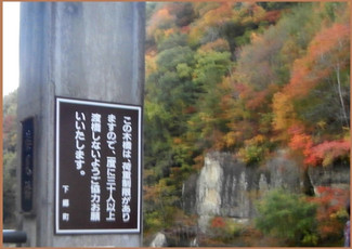 Pa260977burogu_2
