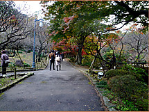 P1360188burogu_2