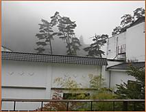 Pa110795burogu_4