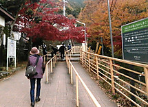 Pb283195buroguburogu