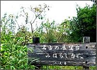 P1410465burogu