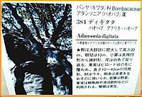 P1410735burogu_66
