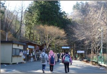 P1440386_kouribasira